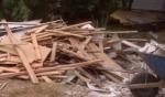 Nelson wood demo